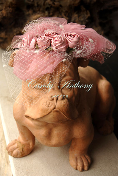 image: Handmade, limited edition birdcage veil with creamy rolled roses under a cloud of soft pink veiling.